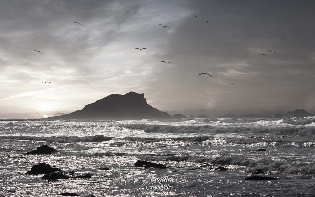Por do sol na praia da Ponta Ruiva no Algarve com gaivotas