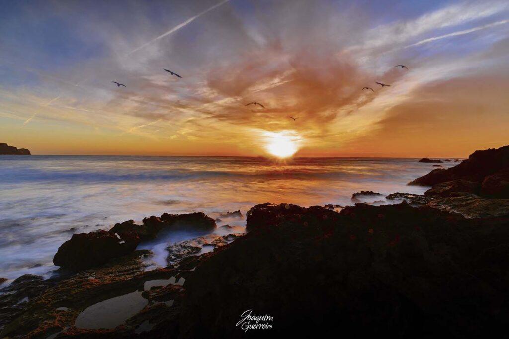 Mar e Gaivotas ao Por do Sol - Algarve