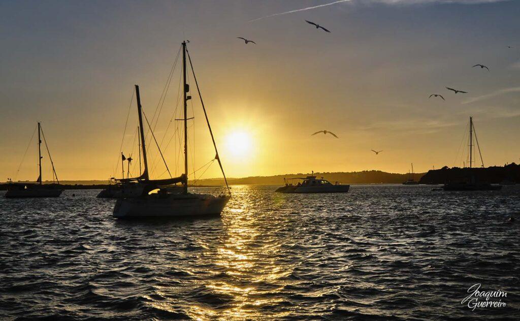 Por do Sol com barcos e gaivotas na Ria de Alvor